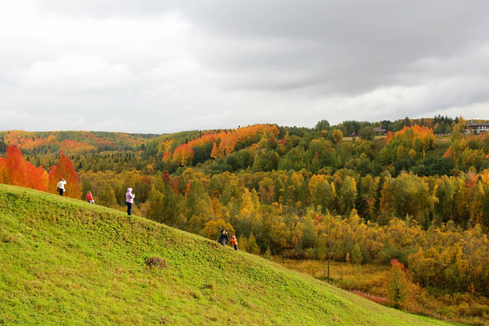 arkhangelsk-region14