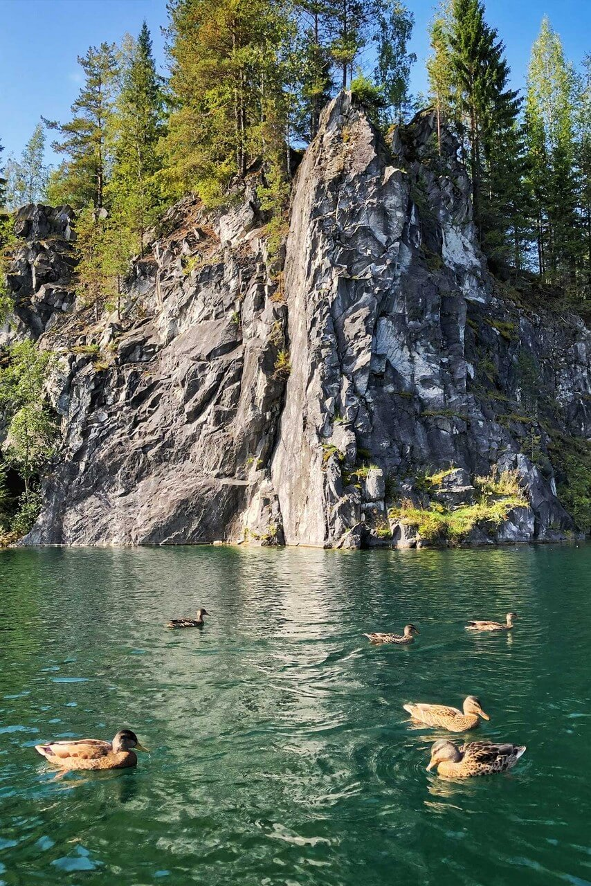 Sharp marble cliffs covered with forest, marble quarry with crystal clean water, ducks on the water