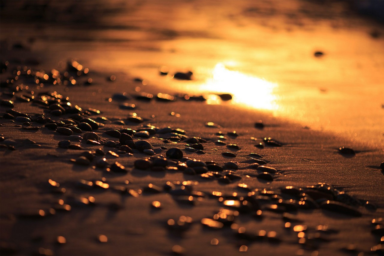 A sandy beach with a reflection of sun during the sunset