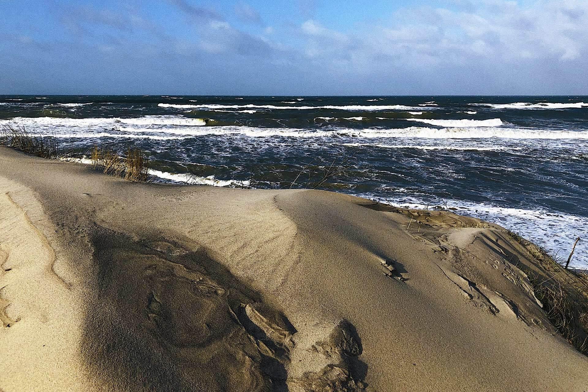 A sandy beach of the Baltic sea, the sand-dune land