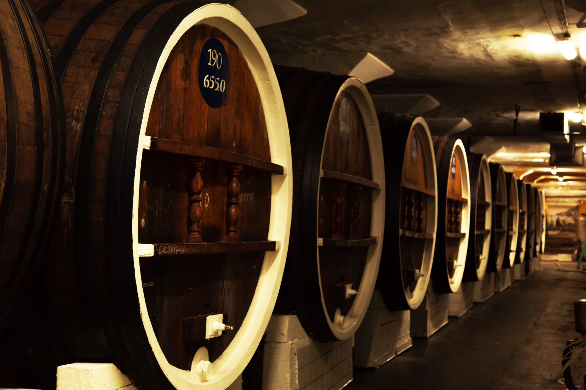 A wine cellar with the barrels of wine